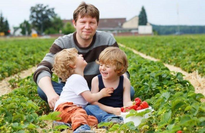 Fonduri agricultura