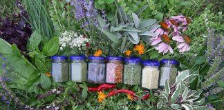 Idei de afaceri mici plante aromatice