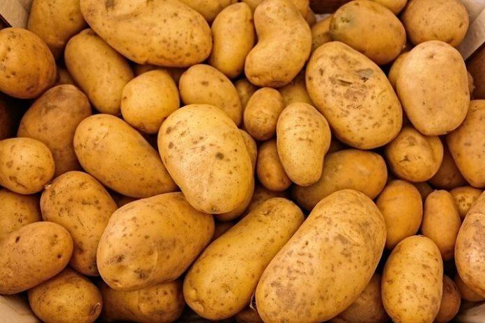 Soiuri cartofi romanesti