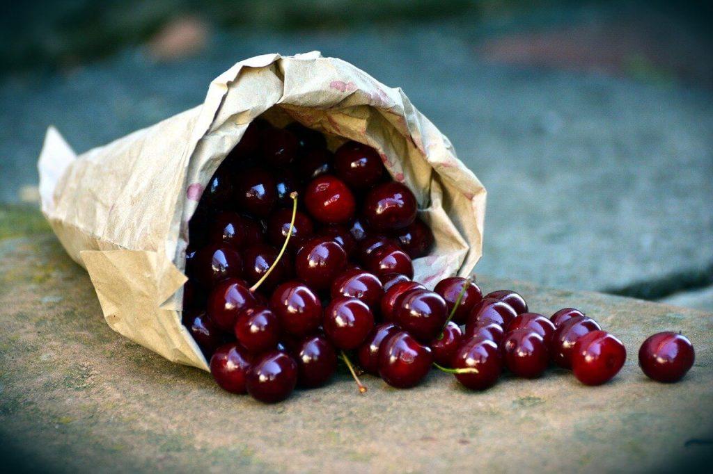 Soiuri de visin cultivate cu succes in Romania