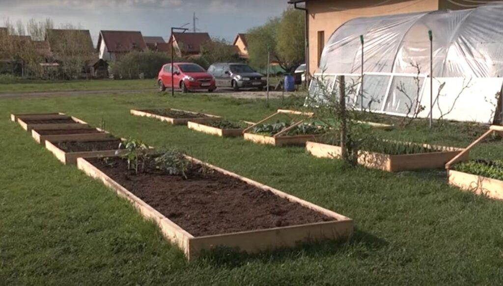 Blocuri de pamant intr-o gradina de legume