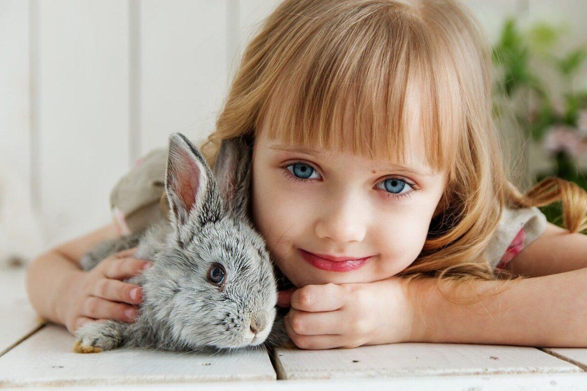 Nume de iepuri